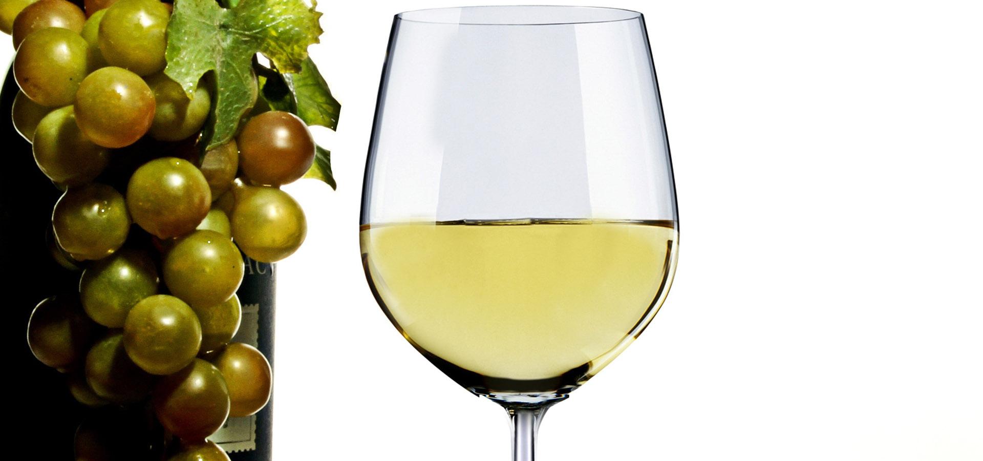 Parallax_vino bianco
